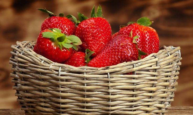 Как правильно выращивать клубнику, чтобы собрать богатый урожай красивых, сочных и сладких ягод? Все ответы – в нашей статье.  Клубника (или садовая земляника) на ...