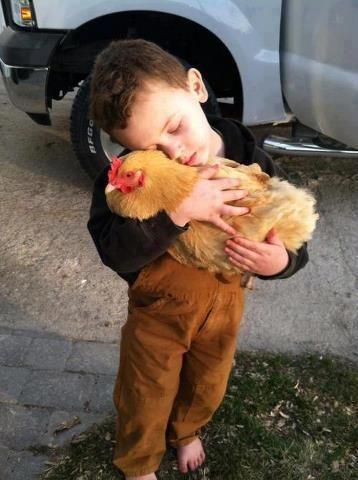So sweet..boy w his hen
