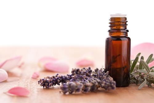 Arbre à thé : une huile essentielle miraculeuse | Medisite
