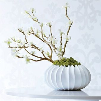 Zen-like centerpiece - glue white dendrobium orchids to manzanita branches, then cover the base with deer moss.