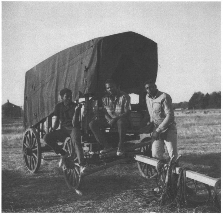 Η απαρχή της Εκστρατείας των Φτωχών Ανθρώπων και το Mule Train (Μέρος Α')   Από τον Γεώργιο Νικ. Σχορετσανίτη #afroamerican #poor #people #unemployment #mule #train http://fractalart.gr/mule-train-1/