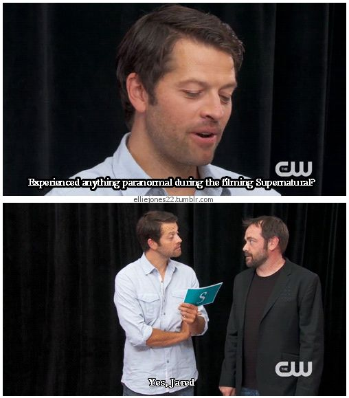 "Misha Collins & Mark Sheppard [gifset] - ""Experienced anything paranormal during the filming of Supernatural?"" ""Yes, Jared."""