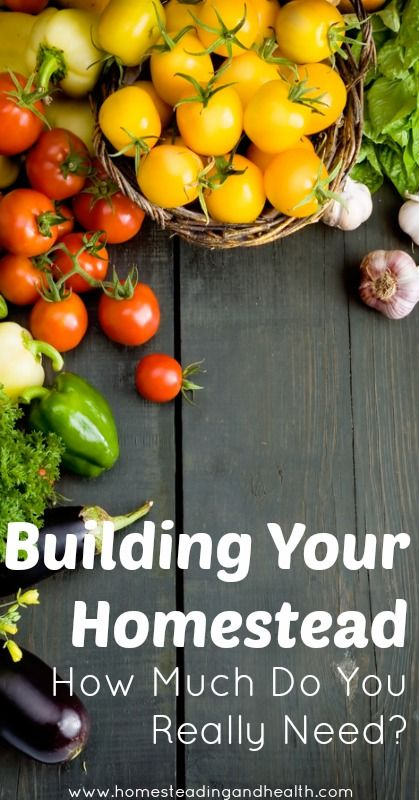 Build your homestead!