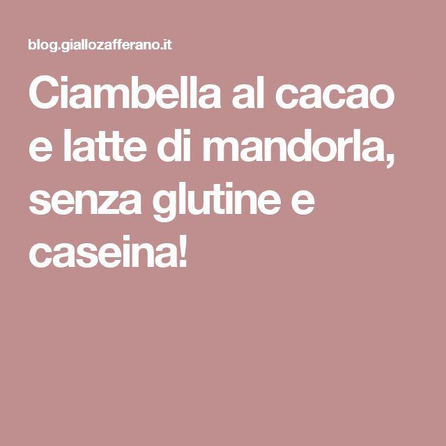 Ciambella al cacao e latte di mandorla, senza glutine e caseina!