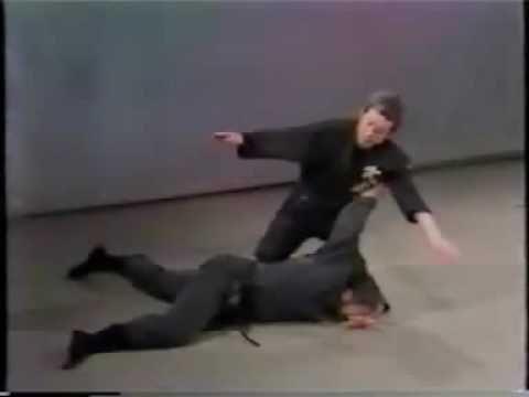 Ninjutsu Grand Master Masaaki Hatsumi in Action Pt. 8