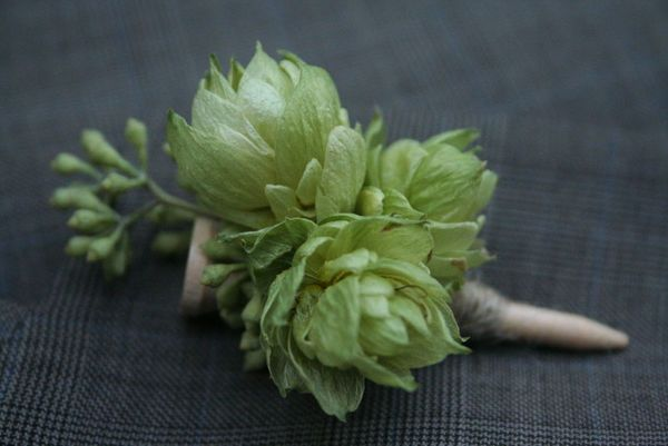 Hops Boutonniere: Most groomsmen are fine with floral boutonnieres, but given the option between a giant pink rose or a clever design with hops and a wooden golf tee? Yeah, not even a contest. Hops are actually really pretty. You can also add them to your bouquet and centerpieces.