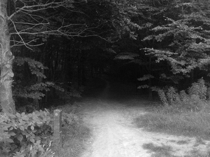 Twilight Zone (3)