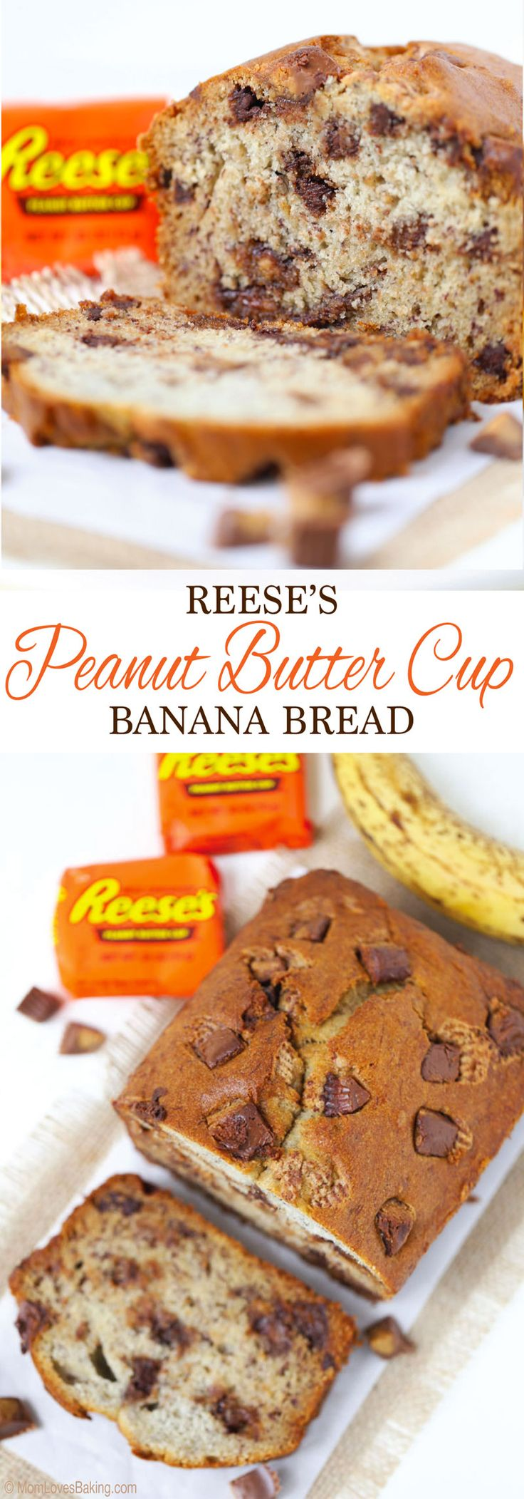 It's moist, delicious and filled with chopped Reese's Peanut Butter Cups and chocolate chips! You'd NEVER know it's gluten free too! Get recipe on http://MomLovesBaking.com