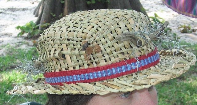 how to make a cattail hat
