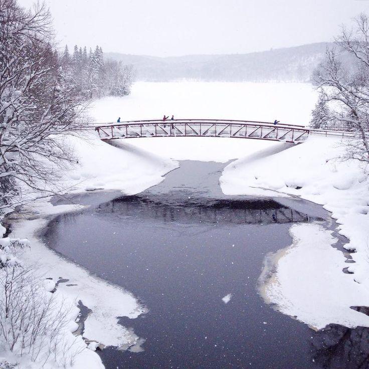 Winter Wonderland - Arrowhead Provincial Park #DiscoverON