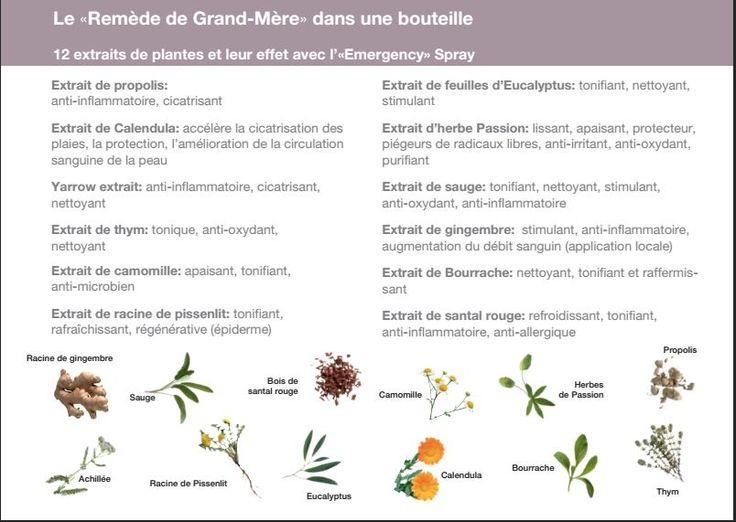 Emmergency : 12 plantes