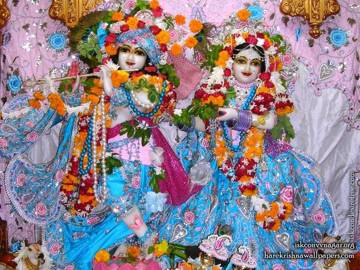 Sri Sri Radha Giridhari Wallpaper (019)   Download Wallpaper: http://wallpapers.iskcondesiretree.com/sri-sri-radha-giridhari-iskcon-vallabh-vidyanagar-wallpaper-019/  Subscribe to Hare Krishna Wallpapers: http://harekrishnawallpapers.com/subscribe/  #Giridhari, #Krishna, #RadhaGiridhari, #RadhaKrishna, #SrimatiRadharani