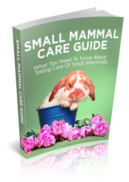 Small Mammal Care Guide - eBook