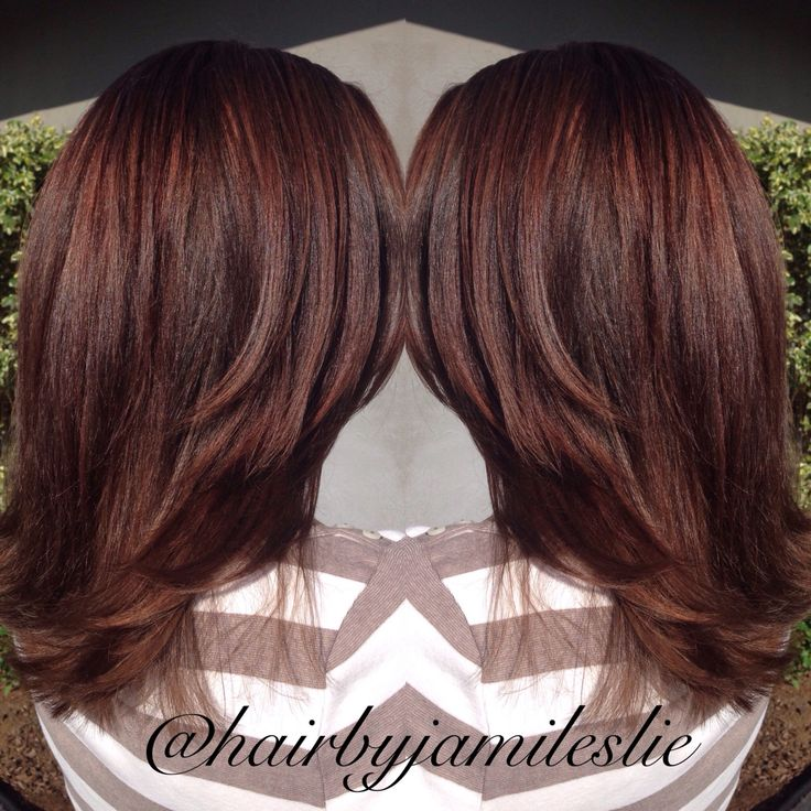 329 Best Mahogany Hair Colors Images On Pinterest Gorgeous Hair