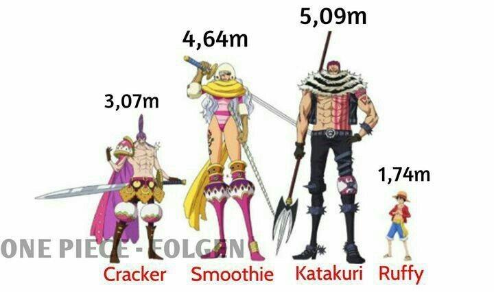 Height Differences In One Piece Am I Right Anime Stuff One