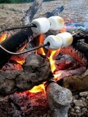Roasting marshmallows fun stuff
