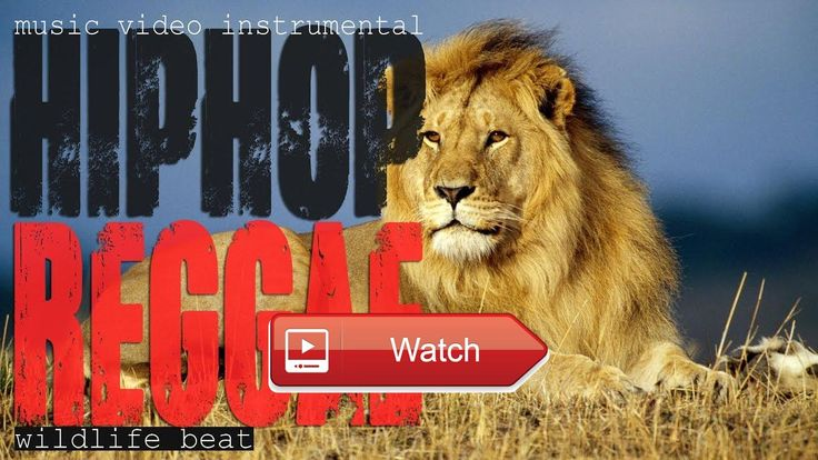 Music Beat Instrumental Hip Hop Reggae Beat WILDLIFE Full HD Videos  Tubagusdin Music DINmuSic Hip Hop Rap Reggae Melodic Instrumental Call Me via Facebook and Follow My Instagram