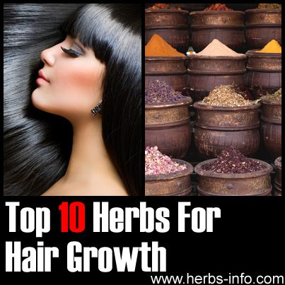 Top 10 Herbs For Hair Growth ►► http://www.herbs-info.com/herbs-for-hair-growth.html?i=p