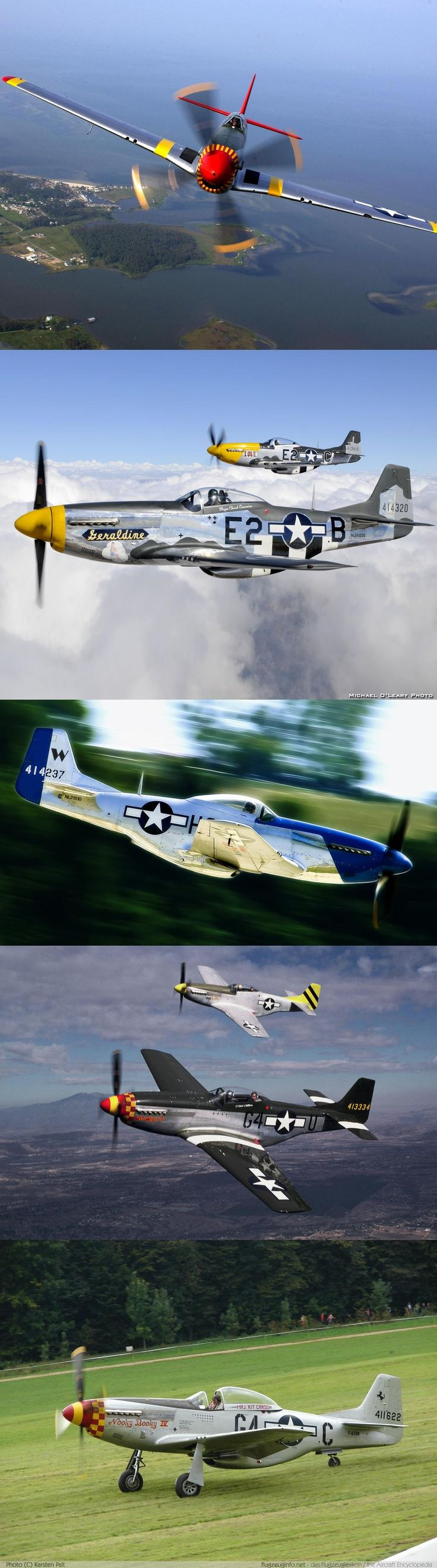 P-51 Mustang #coupon code nicesup123 gets 25% off at  www.Provestra.com www.Skinception.com and www.leadingedgehealth.com