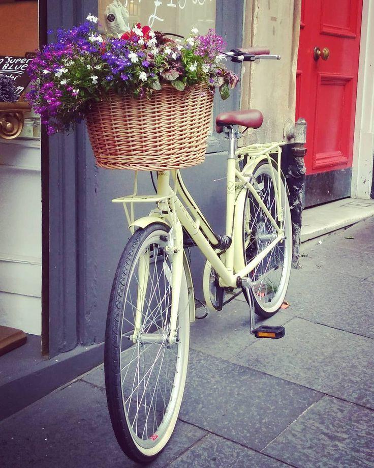 велосипед и цветы фото так