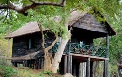 Jungle Lodges - K.Gudi Wilderness Camp - in B.R.Hills - Mysore