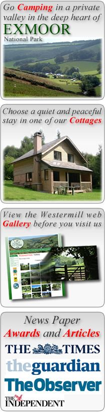 2 hrs Westermill Farm Holidays - Camping On Exmoor - Self Catering Accommodation Exmoor Somerset / North Devon