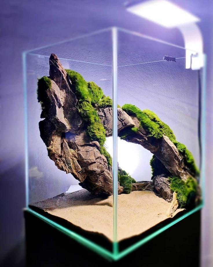 Nano Aquascape 29x29x35 Cm Hardscape Layout-#29x29x35 # ...