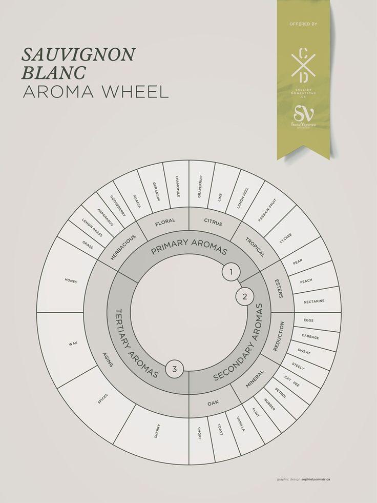 Sauvignon Blanc grape variety wine aroma profile wheel flavors fruit spices Social Vignerons #Wine #Wineeducation