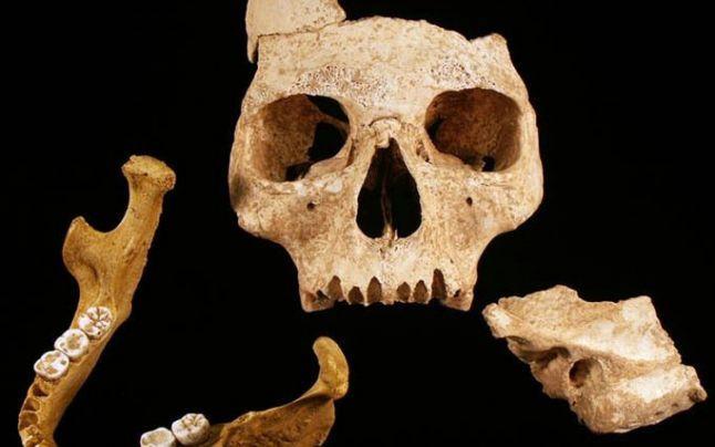 Cel mai bătrân european, descoperit într-o peşteră din România, schimbă istoria evoluţiei umane. Cercetătorii, ameninţati cu închisoarea la ei în ţară