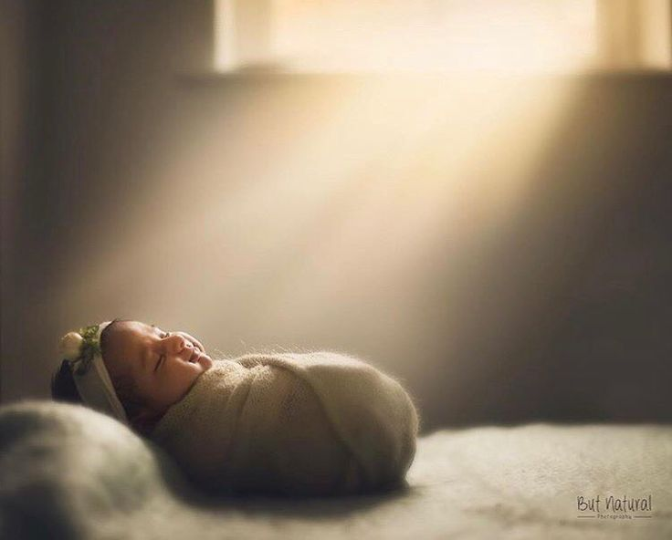 "374 Likes, 10 Comments - Celebrate Childhood (@celebrate_childhood) on Instagram: ""This is simply too precious! Is this not the most beautiful newborn image ever? 😍 ✨Thank you so…"""