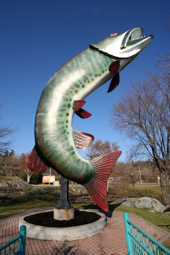 Giant fish -- Kenora, Ontario, Canada. More