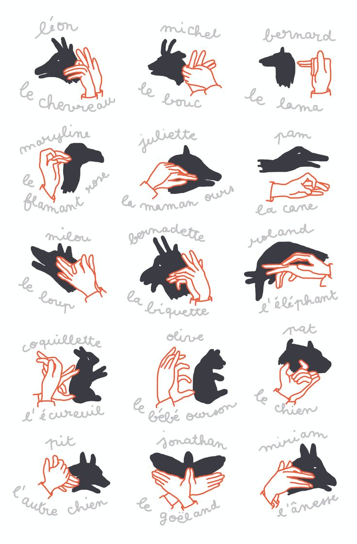 macocobox janvier - ombres et lumière - ombres chinoises / hand shadows / shadow puppet show - illustration camille chauchat