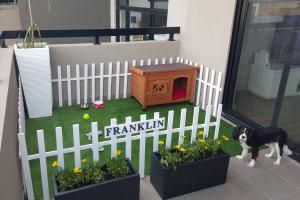 10 Dog-Friendly Ideas for Apartment Balconies: Turn your balcony into a tiny dog park