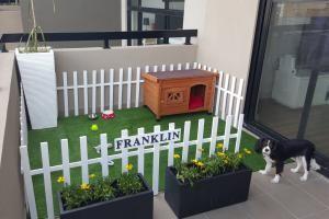 10 Dog-Friendly Ideas for Apartment Balconies: Turn your balcony into a tiny dog park