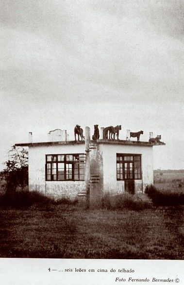 The famous and historical Lion House of Gorongosa National Park (Mozambique)