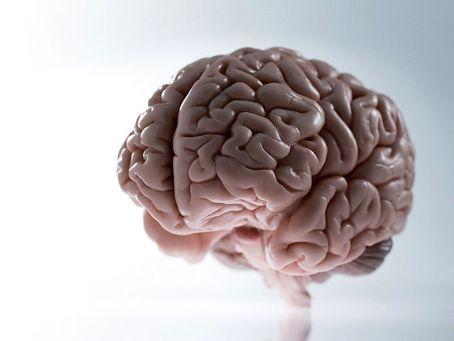 Penyebab Serta Ciri Ciri Kanker Otak Yang Perlu Anda Waspadai