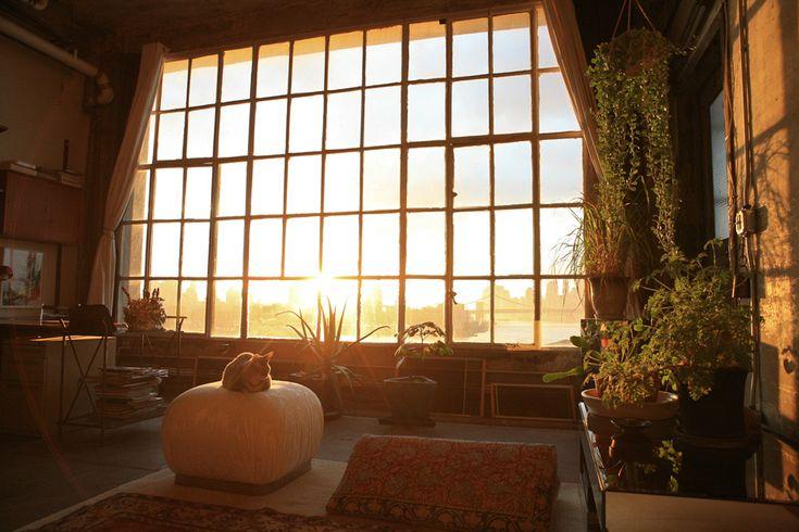 Beautiful: Brooklyn Apartment, Bohemian Homes, Big Windows, Plants, Huge Windows, Dream Life, Shoji, New York, Mornings Lighting
