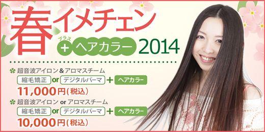 『春イメチェン プラスヘアカラー2014』