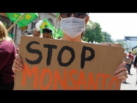 La Marcha internacional contra Monsanto: 40 países y más de 400 ciudades (EN DIRECTO) - RT