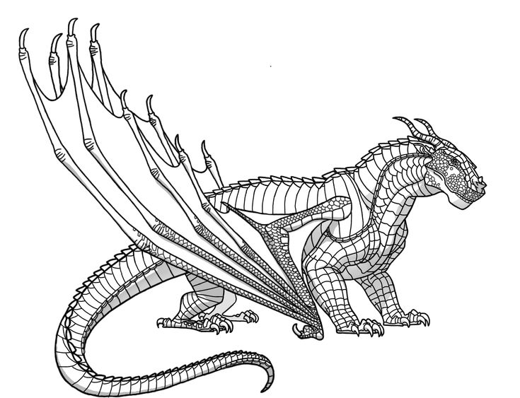 Wings of Fire Ideas! - Hybrid Appearances (With images ...