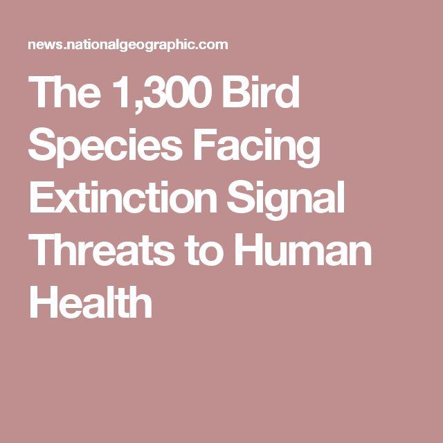 The 1,300 Bird Species Facing Extinction Signal Threats to Human Health