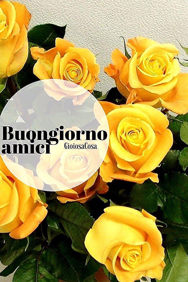 Mazzo Di Fiori Emoticon.Gioiosacosa Plants Flowers