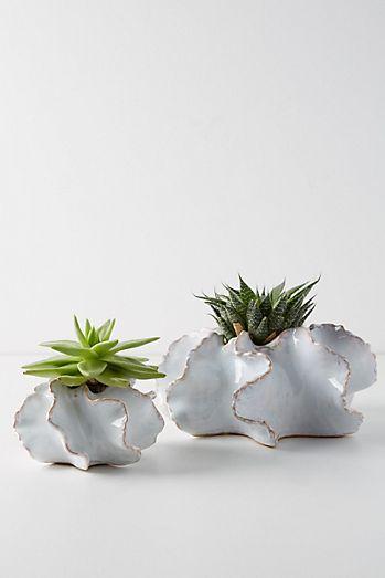 Ceramic Planter Set