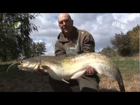 CARP FISHING VIDEOS MIKE SALISBURY AT LA BOTTE FRANCE SELF FILMED NASH TV RAW