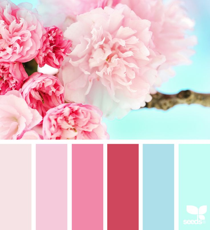 17 Best Ideas About Mint Paint Colors On Pinterest: 17 Best Images About Inspirational Colour Palettes On