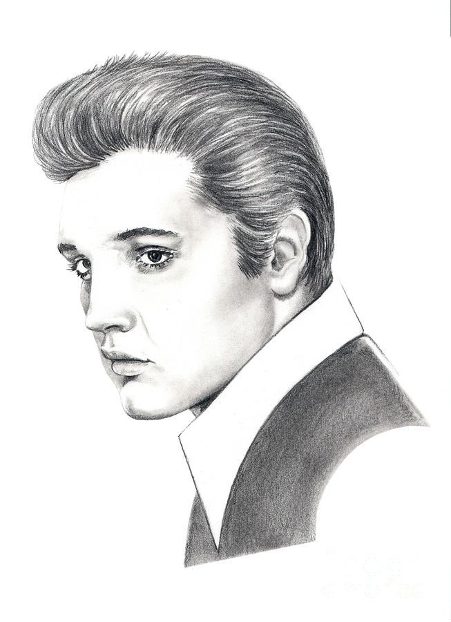 Elvis Presley Elvis Presley Florida And Artworks