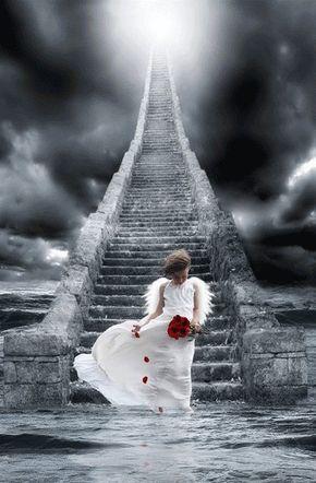 ❥ Angel, stairway to heaven