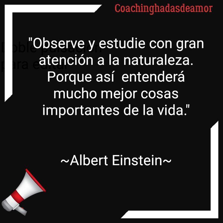 Observe y estudie con gran atención a la naturaleza. Porque así  entenderá mucho mejor cosas importantes de la vida.   Albert Einstein