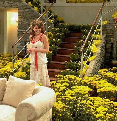 Image result for flores amarillas floricienta