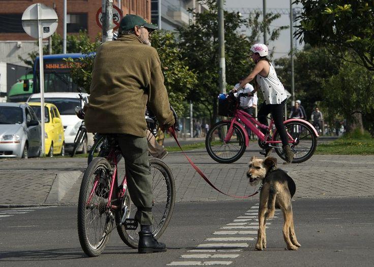 Bogotanos recorren hasta 30 kilómetros diarios en bicicleta - RCN La Radio